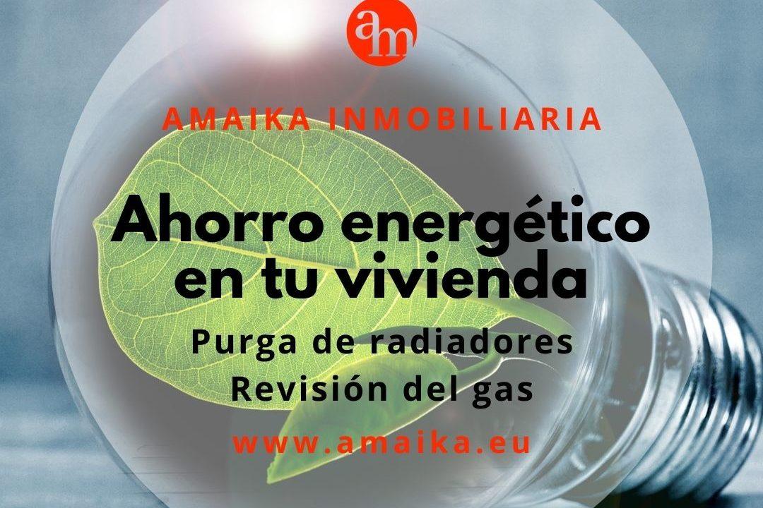 Ahorro energético en tu vivienda_ radiadores a gas